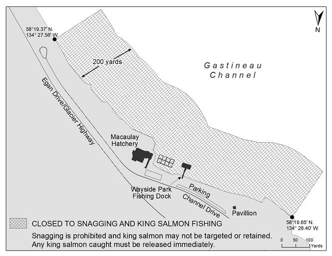 Macaulay Hatchery Area Closed to King Salmon Fishing