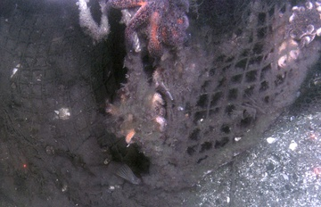 Lost trawl in Chiniak Bay, Kodiak
