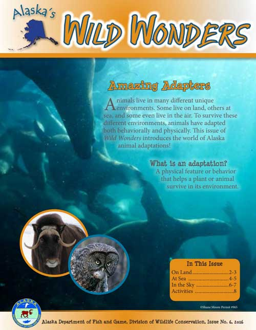 Amazing Adapters - Alaska's Wild Wonders (Issue 6)