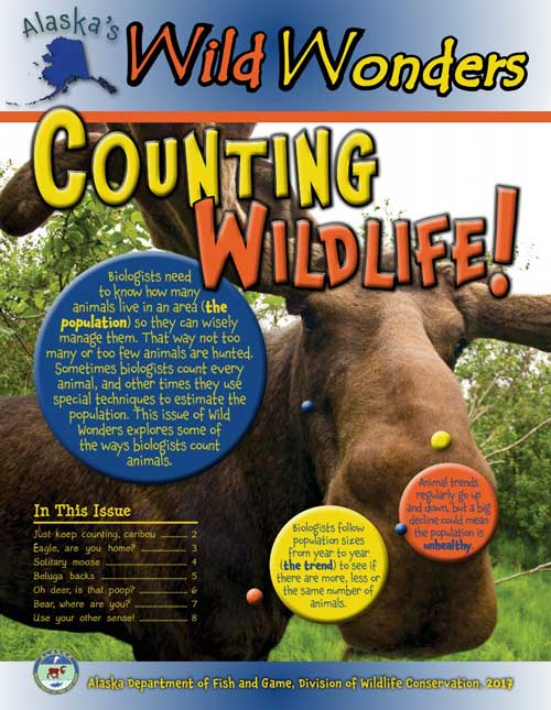 Counting Wildlife! - Alaska's Wild Wonders (Issue 7)