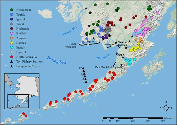 Gene Conservation Laboratory Bristol Bay Sockeye Salmon MSA - Salmon location map us