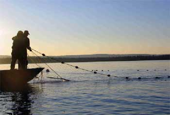photo of a man throwing a castnet from a boat