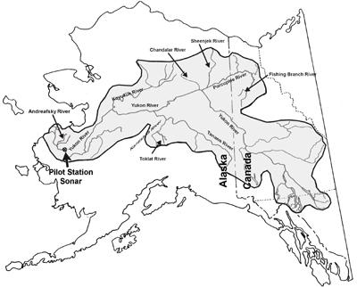 Yukon Pilot Site And River Alaska Fisheries Sonar Alaska