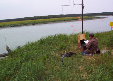 Kenai rm 8 6 other tools alaska fisheries sonar alaska for Kenai river fish counts