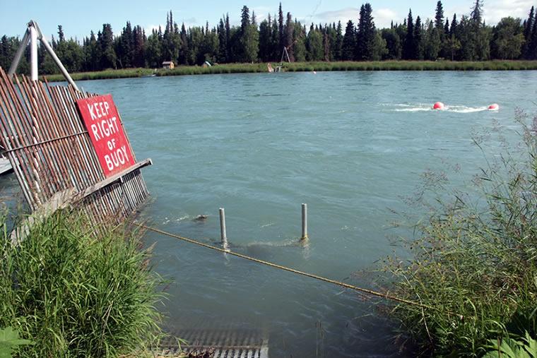 Yukon alaska department of fish and game autos weblog for Department fish and game
