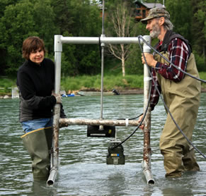 Kenai rm 19 sonar tools alaska fisheries sonar alaska for Kenai river fish counts