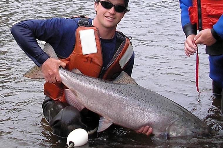 Anchor media alaska fisheries sonar alaska department of for Alaska fish counts