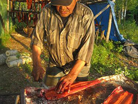 Resident of Nikolai cuts Kuskokwim caught fish before hanging and drying.