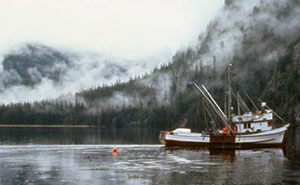 A purse seiner floats in front of mist covered forests