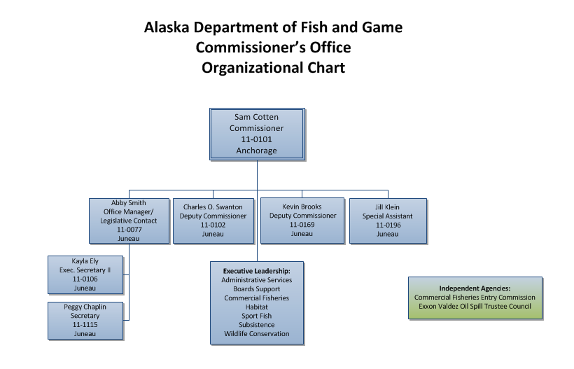 General Organizational Chart of the Commissioner's Office