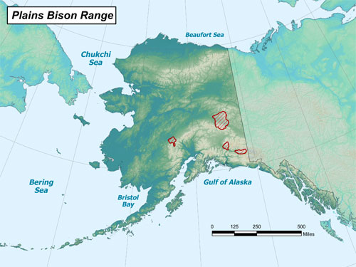 Bison range map