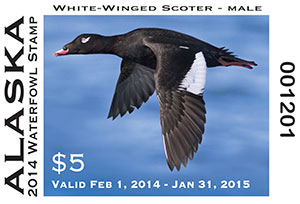 2014 State Duck Stamp
