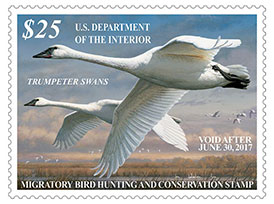 2016 Federal Migratory Bird Hunting Stamp