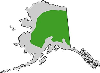 Map of Alaskan boreal forest regions
