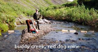 Buddy Creek, Red Dog Mine
