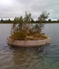 Artificial island for nesting