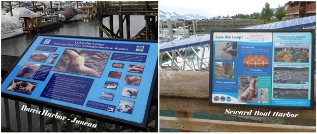 Lose the Loop Displays in Juneau and Seward harbors