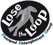 Lose the Loop Pinniped Entanglement Group Logo