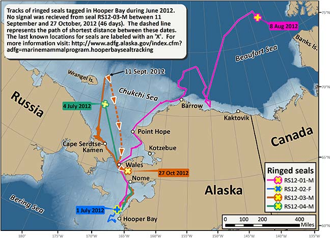 Map tracking ice seal movements between 09/11/2012 – 10/27/2012