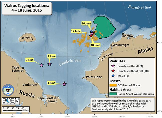Walrus Tracking Projec...