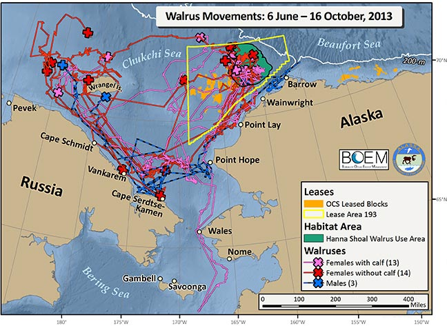 Walrus Tracking Maps A...