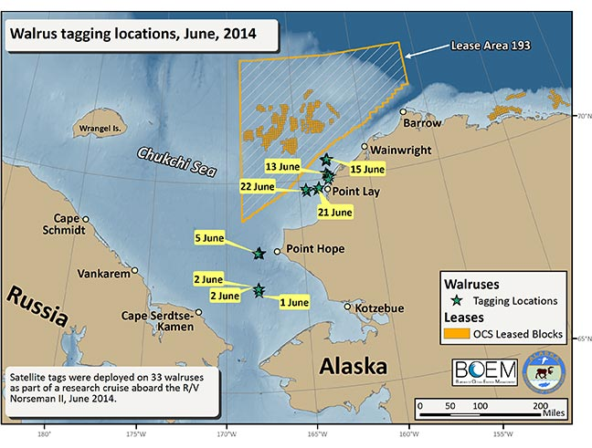 Figure 1. Walrus Tagging Locations, June 2014