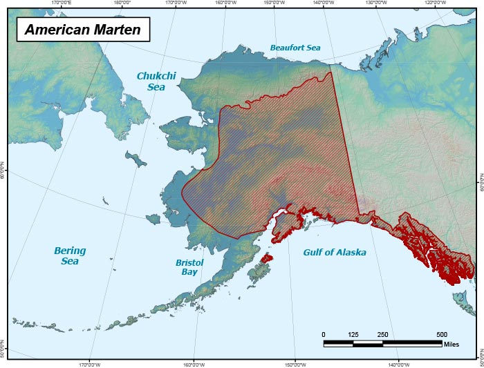 Range map of American Marten in Alaska