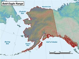 Bald Eagle range map