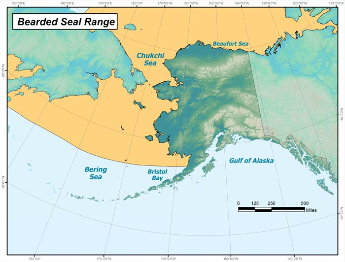 Range map of Bearded Seal in Alaska