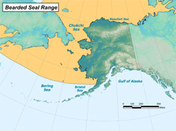 Bearded Seal range map