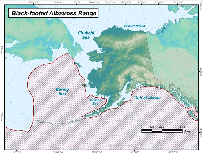 Range map of Black-footed Albatross in Alaska