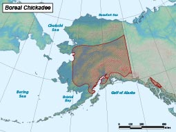 Boreal Chickadee range map