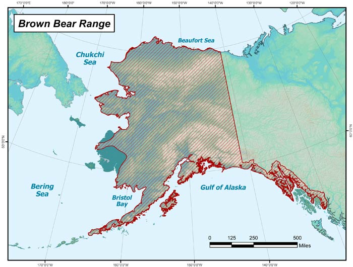 Range map of Brown Bear in Alaska