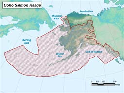 Coho Salmon range map