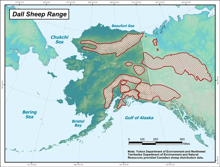 Range map of Dall Sheep in Alaska