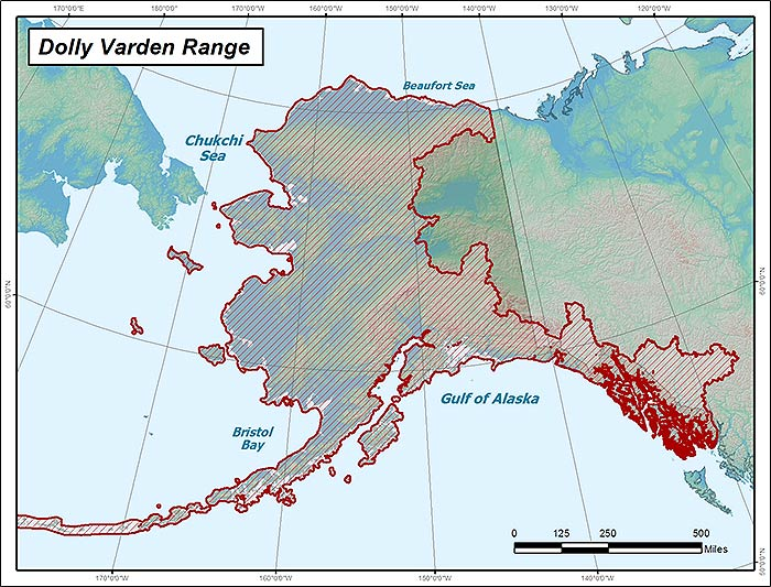 Range map of Dolly Varden in Alaska