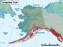 Dungeness Crab range map