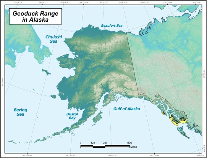 Range map of Geoduck Clam in Alaska