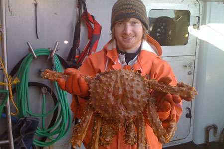 Photo of a Golden King Crab
