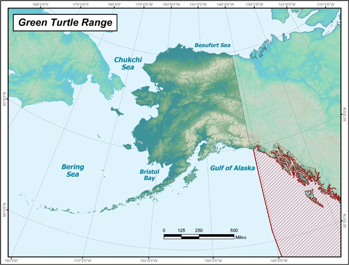Range map of Green Sea Turtle in Alaska