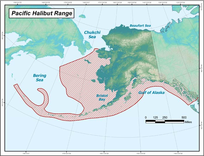 Range map of Pacific Halibut in Alaska