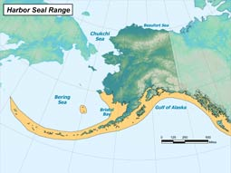 Harbor Seal range map
