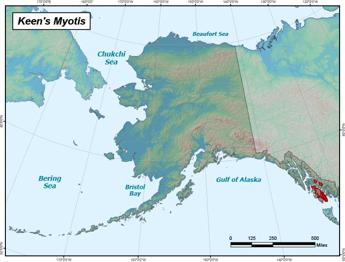Range map of Keen's Myotis in Alaska