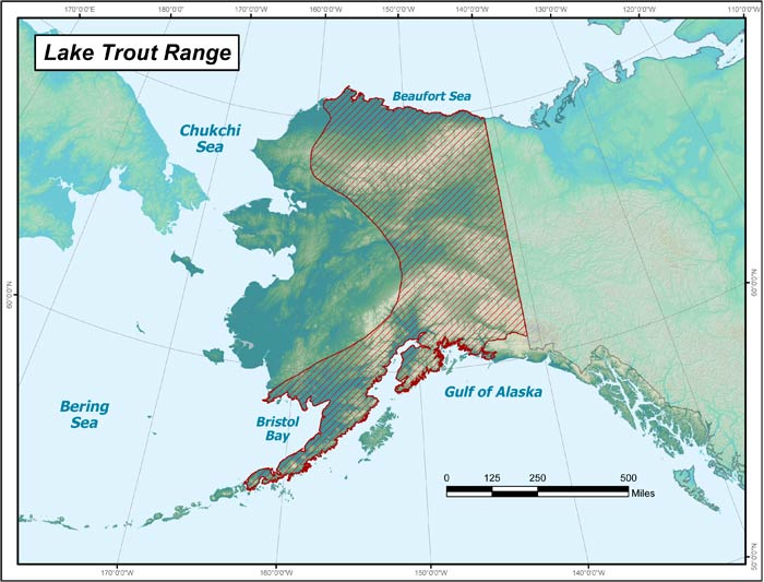 Range map of Lake Trout in Alaska
