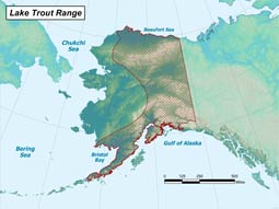 Lake Trout range map
