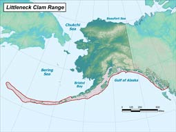 Littleneck Clam range map