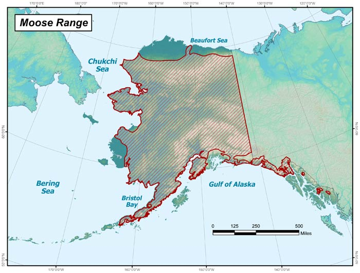 Range map of Moose in Alaska