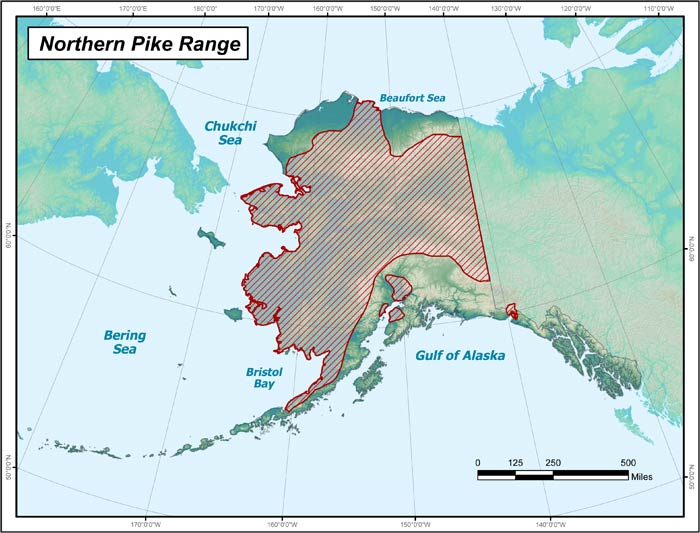 Range map of Northern Pike in Alaska