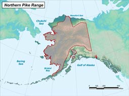 Northern Pike range map