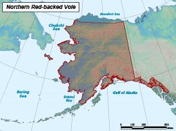 Northern Red-backed Vole range map